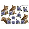 3D ark kattekilling og blå rose