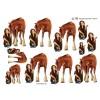 3D ark pige ved hest