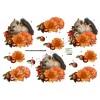 3D ark egern