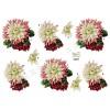 3D ark blomst
