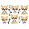 3D ark kat med solbriller