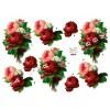 3D ark roser