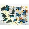 3D ark delfiner og søstjerner