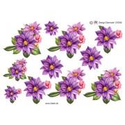 Skønne forårsblomster i lilla farver