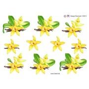 3D ark gul orkide