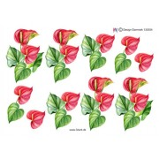 3D ark rød calla blomst
