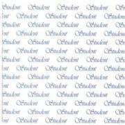 Studenterkort blå 14 x 28 cm