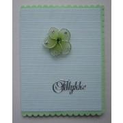 Tillykkekort med lamelgardin - grøn/lime