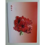 Kort med røde amaryllis